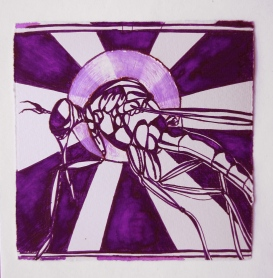 Day 32 (5/20/12): Mosquito
