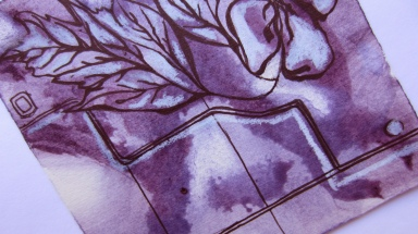 Map to Blueberries Detail