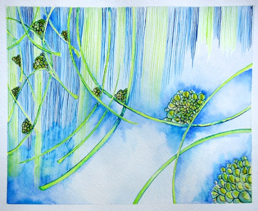 Day 139 (9/14/12): Rain in Blue and Green