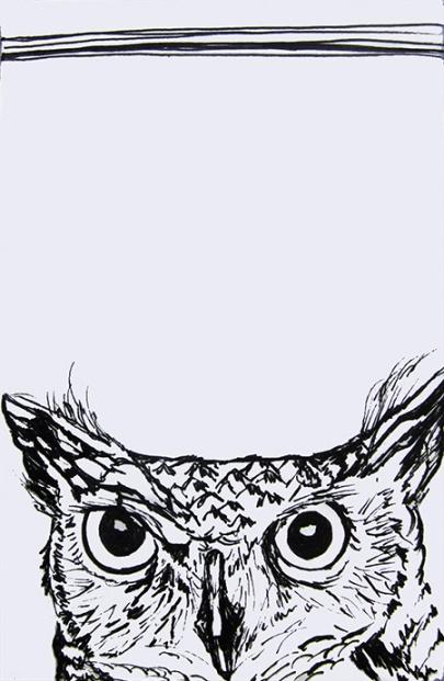 Day 165 (10/10/12): Owl