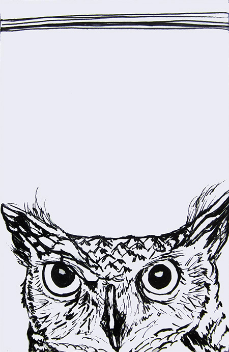 Day 165 (10/10/12): Owl
