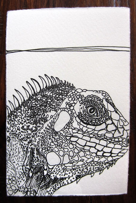 Day 183: Long Live the Lizard