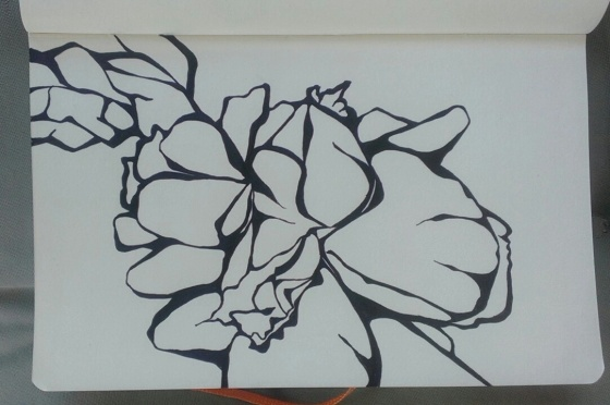 sketchbook flower